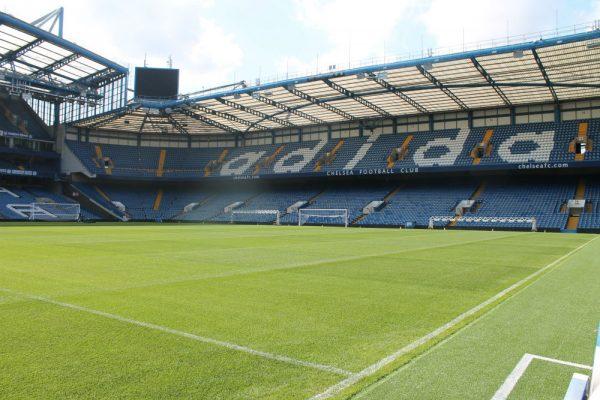 Pelouse Chelsea